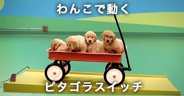 http://grapee.jp/wp-content/uploads/11872_00.jpg