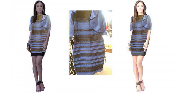 白金?青黒?人によって色が違って見える話題のドレスを、わかりやすく解説 \u2013 grape [グレイプ]