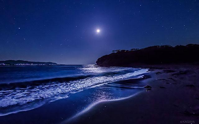 浜辺と夜空