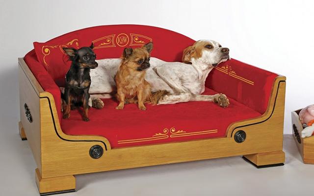 「もう起き上がれない」犬をダメにする高級ベッドが販売