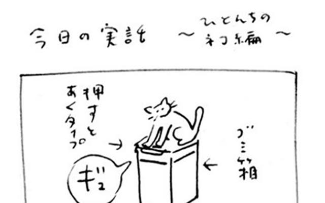 猫が起こした『漫画みたいな話』 だから漫画にしてみた!