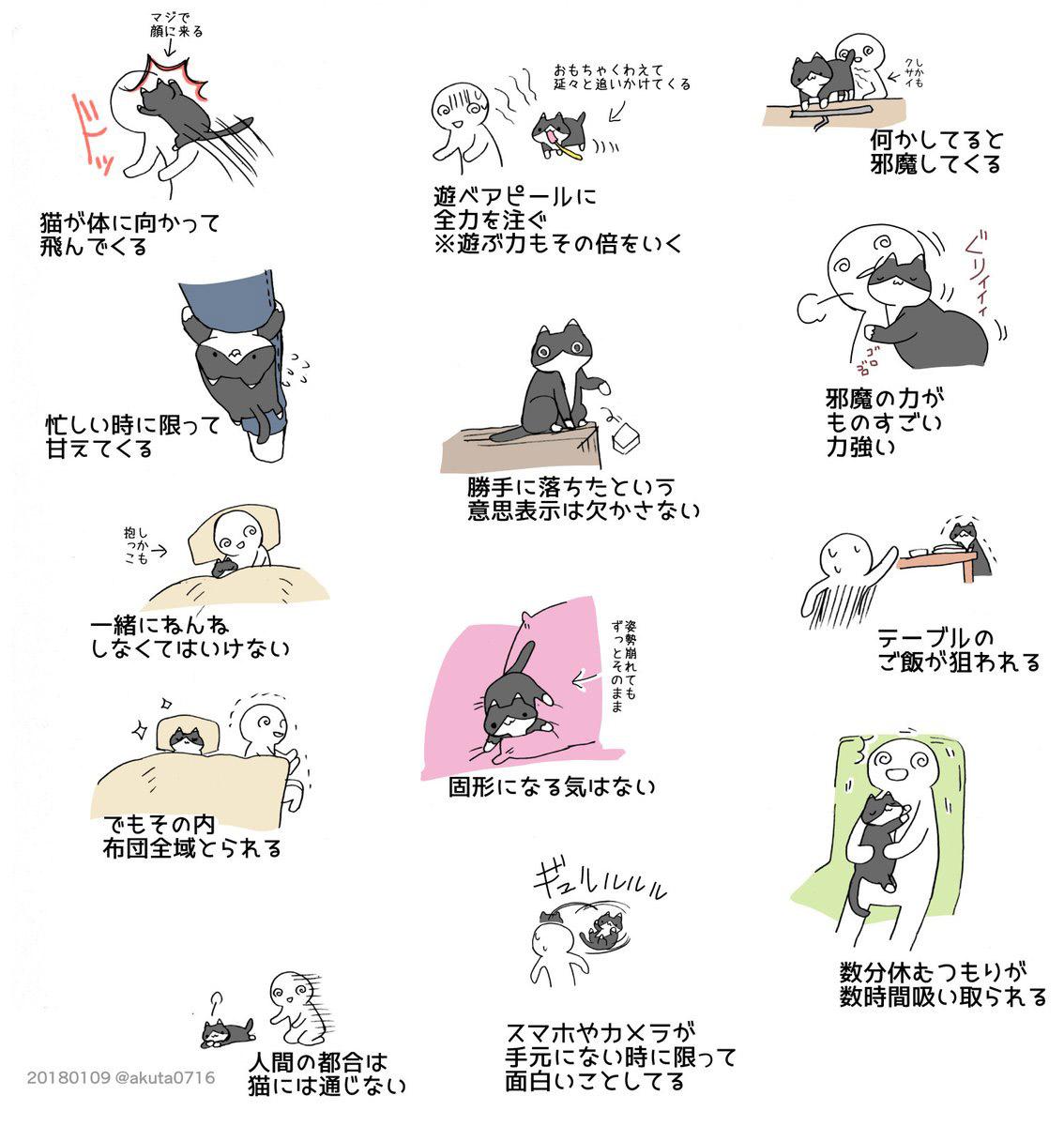 猫を飼うのは大変だということ』 4枚のイラストに、多くの飼い主が涙