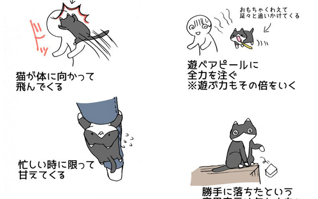 猫を飼うのは大変だということ 4枚のイラストに多くの飼い主が涙