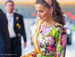スペインのレティシア王妃が即位礼正殿の儀で着用していたドレスのブランドは?価格は?