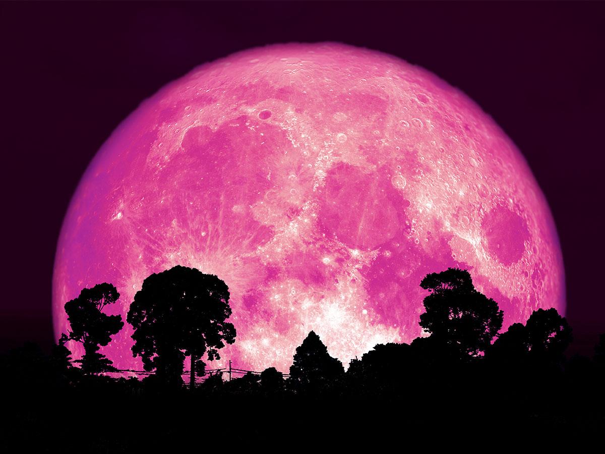 ピンク スーパー ムーン