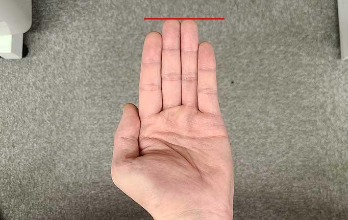 手相占い師に聞いた、素人でも簡単にできるセルフ占い 指の長さや開き方で分かるのは…