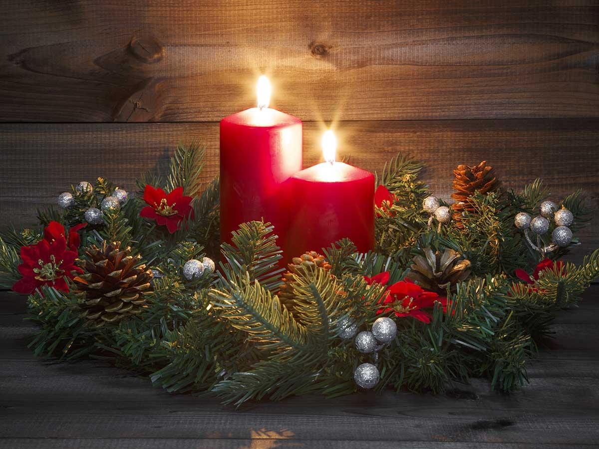12月の誕生花は『カトレア』や『シクラメン』など バラを贈るなら色は?