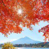 tenki_jp_15811_main